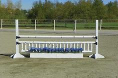 Horse Jumps - Birch jump pole and gate with blue flowers