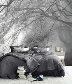 @inesii4 ;;;;dark forest