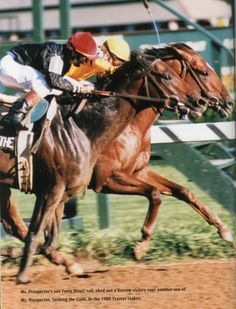 Forty Niner defeating Seeking the Gold in the 1988 Travers S