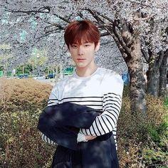 ) yoon seobin : radiating pure happiness to others, a true serendipity moment. Up10tion Wooshin, Yoon Seo, Produce 101, Antara, Mingyu, Boyfriend Material, Writer, Korea, Wattpad