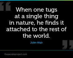 John Muir quotes wall decals - Google Search