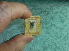 THE BEAUTIFUL FAIRIES of Warwick Goble! Dollhouse Miniature Book, Lovely Little Art Book