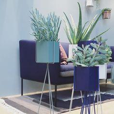 ferm LIVING Plant Stands and Hexagon pots: http://www.fermliving.com/webshop/shop/green-living.aspx