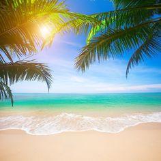 Scenic Ocean Beach Summer Hoilday Backdrop G-563 - 5'W*3'H(1.5*1m)