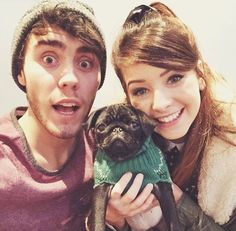 Alfie, Zoe & Nala (pointless pug)