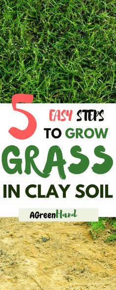 As challenging as clay soil might be for gardening and planting a lawn, it is still possible to get some very healthy grass growing. Although it will take a little extra effort,