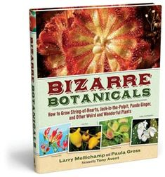 Bizarre Botanicals -- How to Grow String-of-Hearts, Jack-in-the-Pulpit, Panda Ginger, and Other Weird and Wonderful Plants