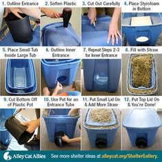 """Feral Cat Shelter Options- instructions to make or purchase outdoor shelters for.Feral Cat Shelter Options- instructions to make or purchase outdoor shelters for """"community"""" cats. Lots of options. Some will give you instructions for free, Feral Cat Shelter, Feral Cats, Outside Cat Shelter, Outside Cat House, Feral Cat House, Cat Shelters For Winter, Tnr Cats, Kitty House, Alley Cat Allies"""