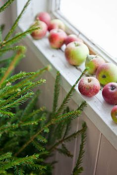 Fresh pine and beautiful apples for simple holiday decor Natural Christmas, Noel Christmas, Primitive Christmas, Country Christmas, Simple Christmas, Winter Christmas, Woodland Christmas, Vive Le Vent, Winter Time