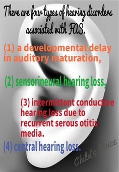 Four types of hearing disorders associated with FAS Trimesters Of Pregnancy, Pregnancy Care, Fetal Alcohol Syndrome, Developmental Delays, Birth Mother, Spectrum Disorder, Disorders, Feelings, Storage