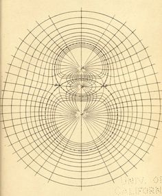 "nemfrog: ""Lines of force"" _A treatise on electricity and magnetism_ 1873 Ligne Claire, Wayne Dyer, Nikola Tesla, Sacred Geometry, Mathematics Geometry, Geometric Shapes, Geometric Designs, Op Art, Tattoo Inspiration"