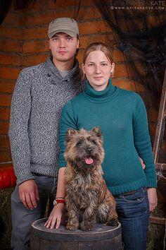 Cairn Terrier Puppies, Cairns, Doggies, Men Sweater, Little Puppies, Pet Dogs, Men's Knits, Puppys, Puppies