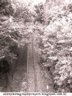 Alex photograph project: Rails... #Photography
