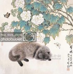Japanese Painting, Chinese Painting, Asian Cat, Illustrations, Illustration Art, Culture Art, Chinese Artwork, Oriental Cat, Inspiration Art
