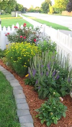 Small Front Yard Landscaping, Front Yard Design, Farmhouse Landscaping, Backyard Landscaping, Backyard Ideas, Backyard Designs, Florida Landscaping, Natural Landscaping, Inexpensive Landscaping