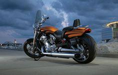 2014 Harley-Davidson® V-Rod® V-Rod Muscle® Motorcycles Photos & Videos Motos Harley Davidson, 2014 Harley Davidson, Harley Davidson Street, Biker Dating, Harley Davidson Online Store, California Ca, Custom Harleys, Hot Bikes, Go Camping
