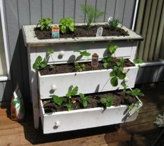 Repurposed dresser:  Turn a dresser into a planter box or container garden, from Hubpages.