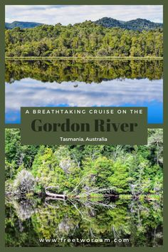 A breathtaking cruise on the Gordon River in Strahan Tasmania. Brisbane, Melbourne, Sydney, Travel Articles, Travel Advice, Travel Guides, Travel Tips, Visit Australia, Australia Travel