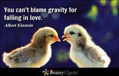Love Quotes - BrainyQuote