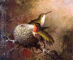 Martin Johnson Heade:Two Ruby Throats By Their Nest