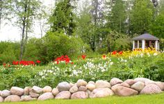 Puutarha, kukkapenkki, kiviaita