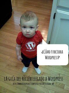 La guía del recién llegado: plugins de WordPress