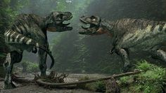 Around the same time as t.rex existence of ruler of north america on other parts of the world such as south america had the 2nd largest carnivore to walk on earth, giganotosaurus. If north america and south america collided expect a battle between the giants. However if the asteroid never hit earth and the continents collided together, t.rex and giganotosaurus would have met