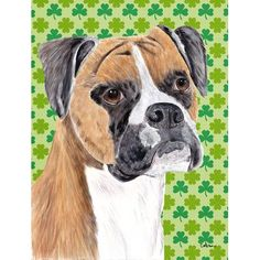 Caroline's Treasures Boxer St. Patrick's Day Shamrock Portrait 2-Sided Garden Flag