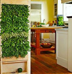 Indoor garden Tumblr