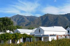 The Vineyard Country House - The Vineyard Country House lies nestled at the foot of the Langeberg Mountain Range, on a working fruit and vineyard farm. We offer four beautifully styled, luxurious en-suite bedrooms, all with private . Bedroom With Ensuite, Weekend Getaways, Swimming Pools, Vineyard, Shed, Outdoor Structures, Cabin, Country, Luxury