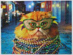 Mardi gra cat