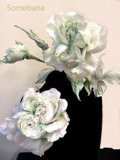 ameising rose!