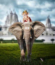 Hindus, Elephant, Pic Pic, Ganesh, Animals, Instagram, Animais, Animales, Animaux