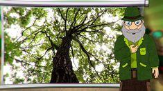 Erdő Ernő Bácsi meséi - Mik azok a fák?