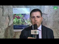 FOGLIE TV - Incontro tecnico organizzato da Arysta Lifescience Italia