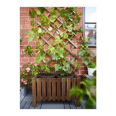IKEA Flower box w trellis, outdoor Grey-brown stained: decoration / plants-pots-stands Outdoor Plants, Outdoor Spaces, Outdoor Gardens, Outdoor Living, Jardiniere Design, Ikea Garden Furniture, Flower Boxes, Flowers, Vertical Gardens