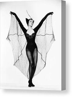Create your own Bat costume for Halloween Bat Halloween Costume, Halloween Pin Up, Halloween Inspo, Halloween 2019, Diy Bat Costume, Vintage Halloween Photos, Halloween Karneval, Fantasias Halloween, Shirley Maclaine