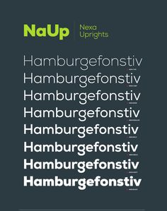 Nexa family includes 16 very unique font styles & weights. The font family is characterized by excellent legibility in both – web & print design areas, well-finished geometric designs, optimized kerning etc. Nexa is most suitable for headlines of all sizes, as well as for text blocks that come in both maximum and minimum variations. The font styles are applicable for any type of graphic design – web, print, motion graphics, etc. and perfect for t-shirts and other items like posters and…