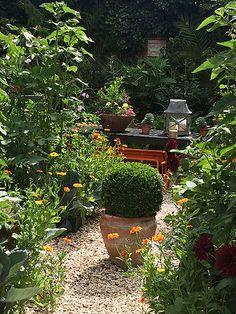 Garden Transformations: Small Contemporary Garden With Storage   The  Distinctive Gardener   Gardening Services   Ealing W5, West London    Pinterest ...