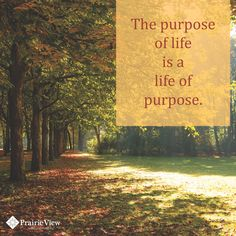 Live a life of purpose.