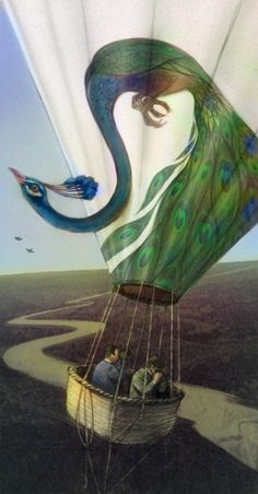 peacock balloon