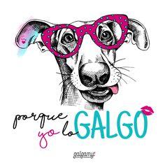 #galgos #perros #loreal #acciónpoética
