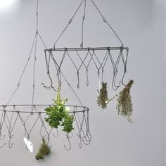 Herb Drying Rack Chandelier - modern country kitchen