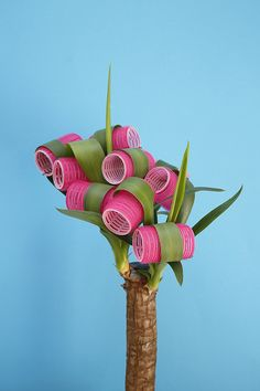 Plant Grooming by Vanessa McKeown, one of many playful photographs accessorizing plants and food or combining them in unexpected ways.