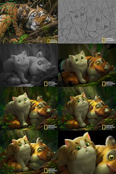 Cartoon National Geographic on Behance