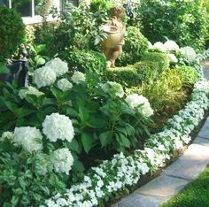 white hydrangeas white impatiens garden. I like the layered look of the impatiens, Peter Pan and box wood and the hydrangeas to the side.                                                                                                                                                     More
