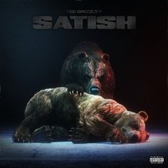 Listen to Satish by Tee Grizzley on Music Blobs Latest Music, New Music, Pete Rock, Serato Dj, Techno Party, Travis Barker, Ty Dolla Ign, Cool Album Covers, Nigeria Africa