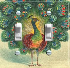 PEACOCK Vintage Art Switch Plate double    by VintageSwitchPlates, $16.00
