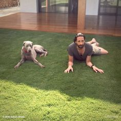 Adrien Brody sera Didier dans le remake hollywoodien du film d'Alain Chabat