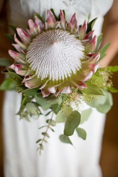Amazing bouquet from Jessica of Hāna Wedding Co. Tropical Flowers, Floral Flowers, Flower Art, Florals, Protea Wedding, Wedding Bouquets, Safari Wedding, Flower Girl Photos, Flower Boutique